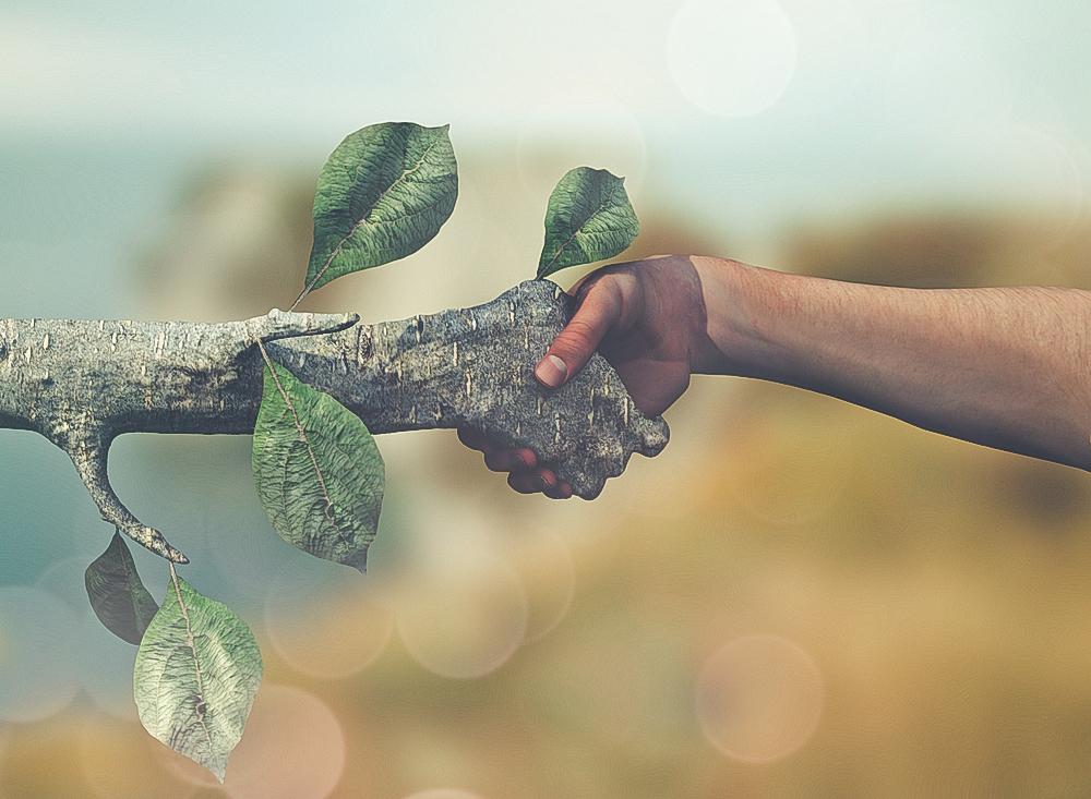 اقتصاد سبز، حلقهی گمشدهی لُرستان
