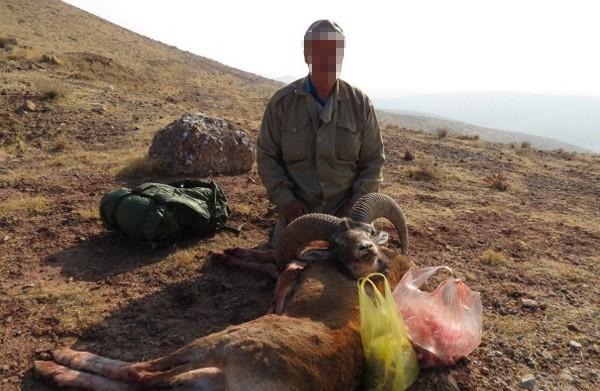 شکار بیرویه محیطزیست الشتر را تهدید میکند