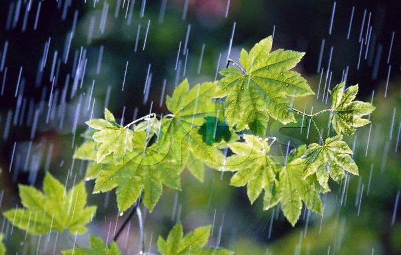 عقربه بارشها همچنان منفی است
