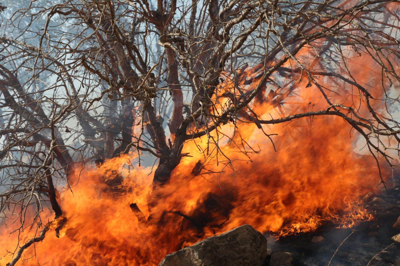 مهار آتشسوزی جنگلها و مراتع کوه باغله بعد از ۳ روز