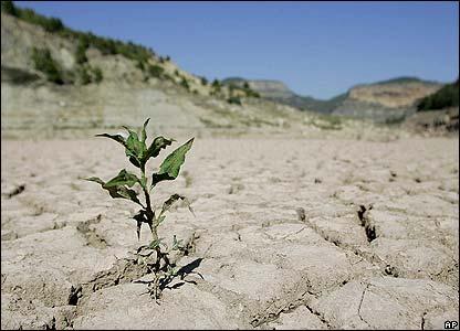 خشکسالی شانزده ساله