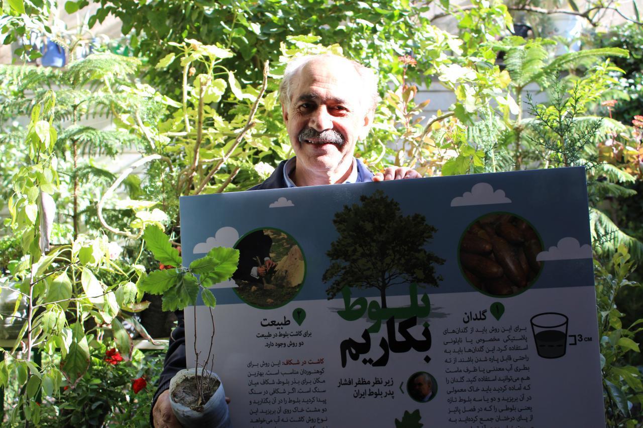 دادهنمای بلوط به پدر بلوط ایران تقدیم شد