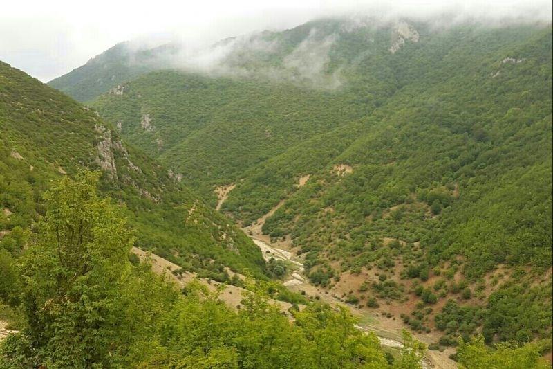 آغاز احداث جادهای ویرانگر از قلب پارک ملی پابند