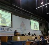 آغاز دومین مجمع محیط زیست ملل متحد در کنیا