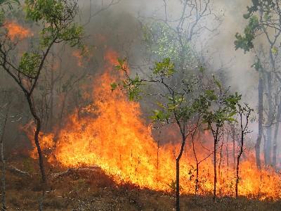 هشدار درباره آتشسوزیهای احتمالی در منابع طبیعی