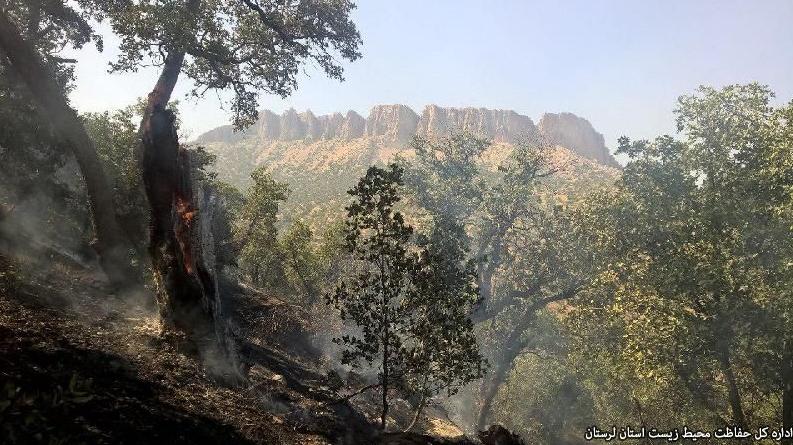 مهار آتشسوزی در جنگلهای سراب دوره