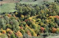 هر ساختوسازی در پارک ملی پابند خلاف قانون است