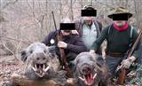 ایران از سال ۲۰۱۴ تاکنون مجوز شکار نداده است