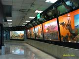 تعطیلی یکماهه موزه پارک پردیسان