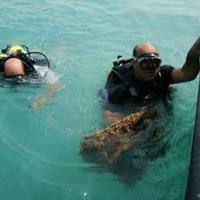 یافتن یک محوطه ساسانی در سواحل کمعمق بوشهر
