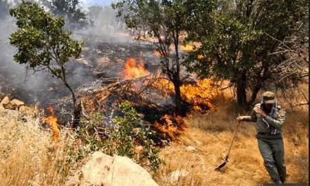 مهار آتشسوزی در جنگلهای بخش پاپی خرمآباد