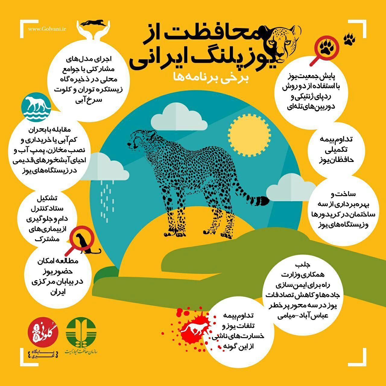 برنامههای حفاظتی از یوزپلنگ