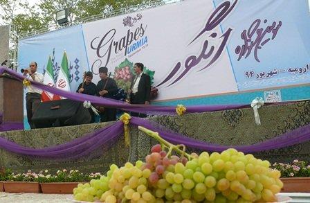چهارمین جشنواره انگور ارومیه شروع بکار کرد
