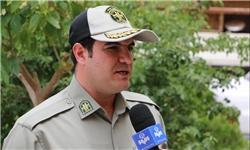 توضیحات سازمان محیط زیست درباره خشکشدن تالاب هامون