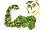 طنز/گیاهخواران و تقسیمبندی آنها