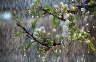 هوای پایان تعطیلات بارانی است