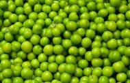 گوجه سبز مهریه دختران شد