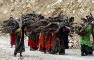 مشارکت زنان ۴۵ روستا در حفاظت از جنگلهای زاگرس