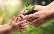 دولت دوازدهم و محیط زیست
