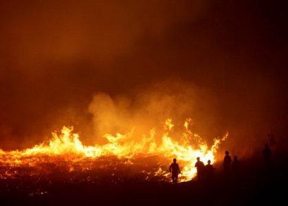 کاهش ۵۷درصدی آتشسوزی در مناطق حفاظتشده لرستان