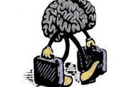 معضل عمومی استفاده از تمام ظرفیت مغز