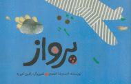 روایت احمدرضا احمدی از پرواز