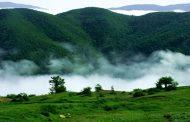 بهرهبرداری از جنگلهای شمال از سال آینده ممنوع است