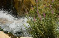 تصاویری از آبشار گریت خرمآباد