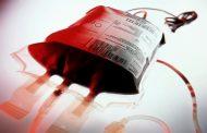 خون میفروشم، پس هستم
