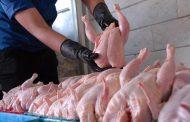 مرغ و گوشت گران نشده است؟