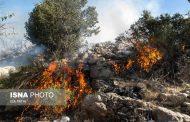 هفت هکتار از جنگلهای دنا در آتش سوخت