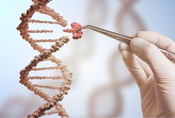 ژن خوب قابل تبدیل است