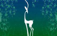 برگزاری جشنواره  فیلم سبز در استان لرستان