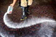محیط زیست توپ را در زمین قالیشوییهای خرمآباد انداخت