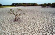 خشکسالی در شش استان زاگرسنشین کشور