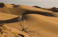 با چه ماشینی به کویر مرنجاب سفر کنیم