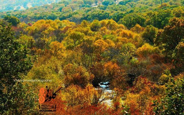 پاییز هزار رنگ کاکارضا را ببینید
