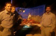 توقیف خودروی حامل گوشت گراز در خرم آباد