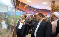 استقبال مردم از موزه تنوع زیستی قزوین