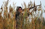 دستگیری ۵شکارچی کبک در قزوین