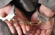 دستگیری ۲ فرد متخلف و کشف ۴سر خرگوش در طارم سفلی