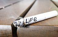 دولت سیگارفروش