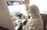 مطالعات ژنتیک باستانشناسی در گورستان لیارسنگبن املش