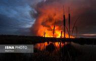 مقصر آتشسوزی تالاب میقان اراک پیدا شد