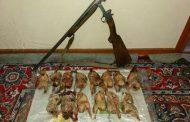 کشف ۱۷۳۰ادوات شکار صید در دوماه اخیر از شکارچیان