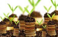 کار اولیها و بحران سرمایه در کشور