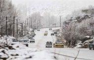بارش برف باعث کشته شدن چند سلبریتی شد