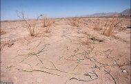۵ دشت دیگر لرستان در صف ممنوعیت برداشت آب گرفت
