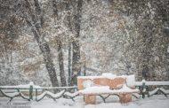 هشدار برای یخزدگی معابر و بارش برف در تهران