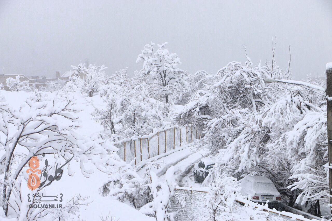 بارش برف بیسابقه در تهران + عکس